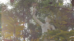 Stone Statue & Trees With Sunlight Lens Flare Stock Footage
