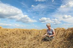 Farmer or agronomist inspect damaged wheat field - stock photo