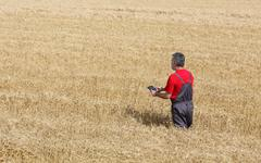 Agricultural scene, farmer or agronomist inspect wheat field - stock photo