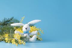 White rabbit and yellow mimosa - stock photo