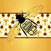 Illustration  label on honey the bee with honeycombs - stock illustration