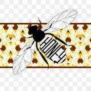 Illustration  label on honey the bee with honeycombs Stock Illustration
