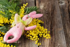 Easter bunny and yellow mimosa Stock Photos