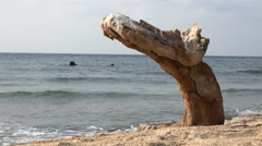 Old abandoned shipwreck anchor in a sandy coast - uninhabited island, Red Sea - stock footage