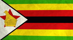Zimbabwean flag waving in the wind (full frame footage) Stock Footage