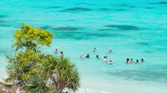 People Swimming in Transparent Blue Water of Lifou Island Stock Footage