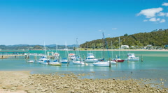 Bay of Islands NZ Boats in the Waitangi Marina Stock Footage