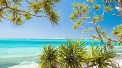 Mystery Island Vanuatu Tropical Beachfront Scene with Indigenous Plants Stock Footage