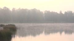 Fog rolls in autumn morning over lake. Sun light penetrate through trees. 4K Stock Footage