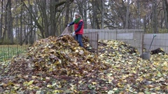 Worker woman carry bag sack full of dry leaves and dump it on compost pile. 4K Stock Footage