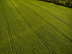 Farmland from above - aerial image of a lush green filed Stock Photos