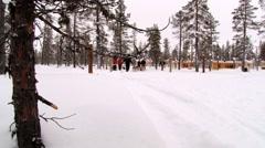 People enjoy dog sledding in the forest in Saariselka, Finland. - stock footage