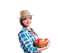 Woman, checked shirt holding basket with apples. Autumn harvest - stock photo
