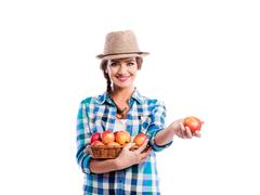 Woman, checked shirt holding basket with apples. Autumn harvest Kuvituskuvat