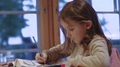 Kid paints in album near the window - stock footage