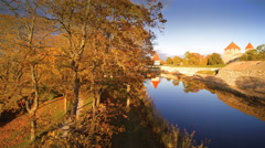 The trees near the lake of Kuressaare castle Stock Footage