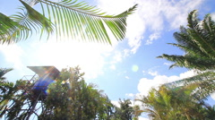 Time Lapse Water Tower Tropical Palm Trees Sunlight Lens Flare Clouds Sky Stock Footage