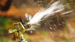 Closeup  water sprinkler irrigation of agricultural field Stock Footage