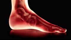 Bones of the Foot. Camera rotates 360 degrees. Seamless Loop. Stock Footage