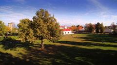 Lots of big oak trees in the park in Saaremaa Stock Footage
