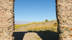 Dolly Pan of Abandon Ashford Mill & Wildflowers  Daytime  - Death Valley - stock footage
