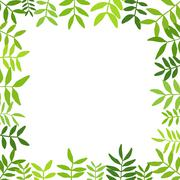 Branches with green leaves.Vector illustration. - stock illustration