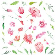 Set of Watercolor Spring Flowers and Leaves Stock Illustration