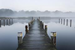 Jetty in morning fog Port Prerow at Prerower Strom or Prerowstrom Darss Stock Photos