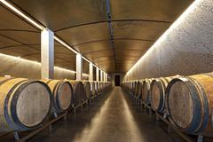 Contemporary barrel cellar wine cellar with wooden barrels Davaz winery Flaesch - stock photo