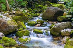 Creek in the Ligurian Alps Stock Photos