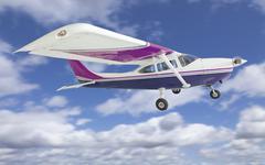 The Cessna 172 Single Propeller Airplane Flying In The Sky. Kuvituskuvat
