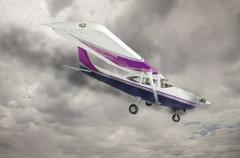 The Cessna 172 With Smoke Coming From The Engine Against An Ominous Gray Sky. Stock Photos