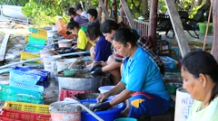 Thai woman cleaned squid drying in the fishing village.  Koh Phangan, Thailand Stock Footage