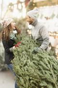 Couple hauling tree at Christmas tree farm Stock Photos