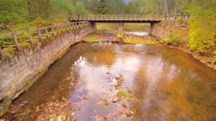 The wooden bridge in the middle of the forest Stock Footage