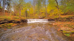 The rushing of waters on the lake in the forest Stock Footage
