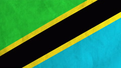 Tanzanian flag waving in the wind (full frame footage) Stock Footage