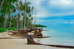 Tropical beach after Tsunami Stock Photos