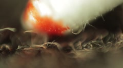 Blood Collecting off Carpet Super Macro - stock footage