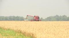 Wheat harvest on farmland Stock Footage