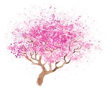 Illustration of sakura Stock Illustration
