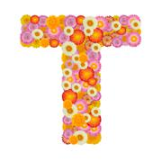 Letter T alphabet with straw flower isolated on white background - stock photo