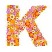 Letter K alphabet with straw flower isolated on white background - stock photo
