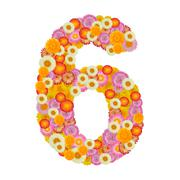 Flower number six. Floral element of colorful alphabet made from straw Stock Photos