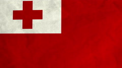 Tongan flag waving in the wind (full frame footage) Stock Footage