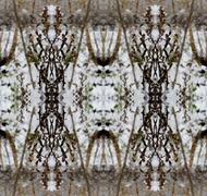 Seamless background pattern. Frost patterns. Through the glass Stock Illustration