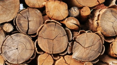 Panning shot of Pile of wood logs storage for background Stock Footage