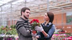 Demanding customer buying flowers in orangery Stock Footage