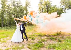 Wedding couple with color smoke in the summer park Stock Photos