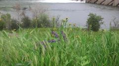American River dams,tilt up  Nimbus Stock Footage